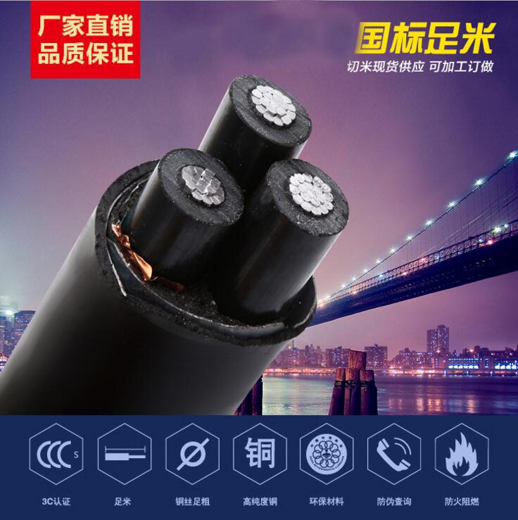 88必发_铝芯阻燃高压电缆ZR-YJLV、ZR-YJLY